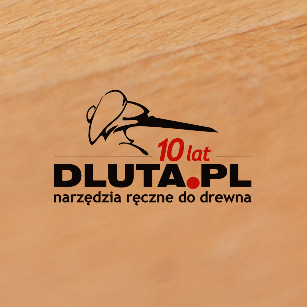 DLUTA.PL