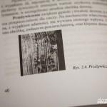 domidrewno_stolarstwo_f (2 of 8)
